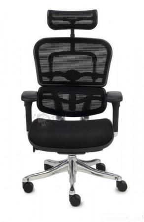 Fotel Ergohuman Plus KMD31